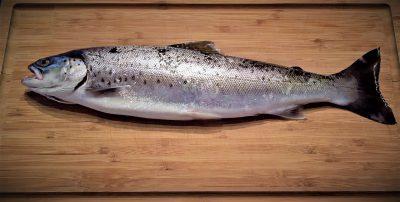 Fischöle können Polyneuropathie bremsen